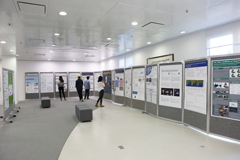 Research Poster Exhibition 研究海报展览